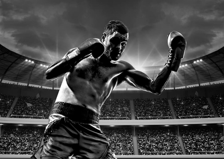 Boxing at Crown Melbourne Sports Bars