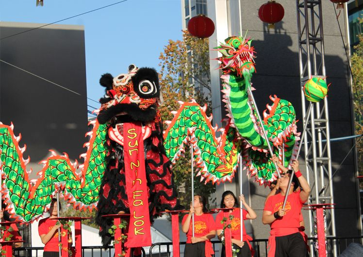 lion dance performance lunar new year